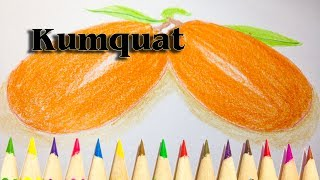 How to Draw a Kumquat Fruit -  We Drawing Fruit Tutorials SLD