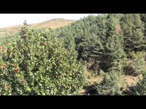 O Courel. La gran reserva natural de Galicia - www.galicia10.com
