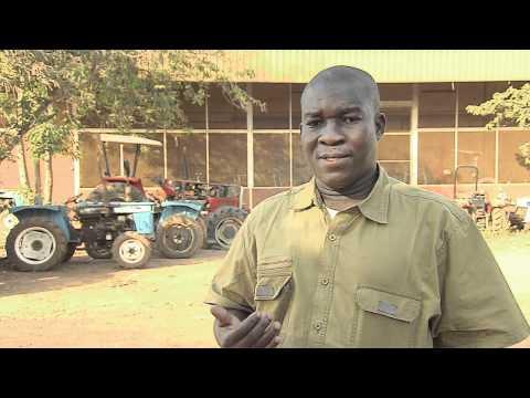 hqdefault - Les fibres textiles : Le cycle de développement du cotonnier