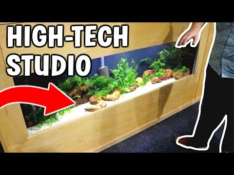 HIGH-TECH AQUARIUM STUDIO TOUR! Turtles, Puffer Fish, and Plecos