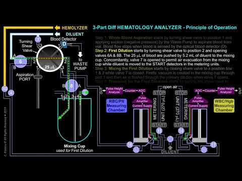 3-Part Differential HEMATOLOGY ANALYZER – Principle of Operation: First  Dilution ANIMATION