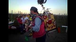 DeFuxDeiwelsWilde  live im wingert vor Gimmeldingen Mandelblüdenfest