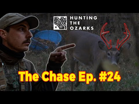 Buck At 5 Yards! | Urban Hunting From The Ground