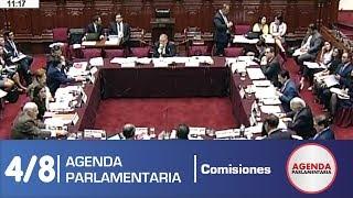 Sesión Comisión de Constitución 4/8 (14/05/19)