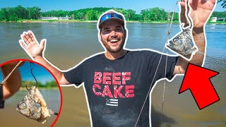 Giant CUTBAIT Catfishing CHALLENGE!!! (Catch Clean Cook)