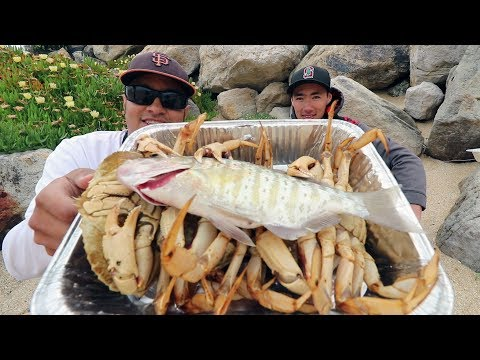 BEACH Catch and Cook! Perch and Crabs Caught in Surf | Recycled DIY Stove