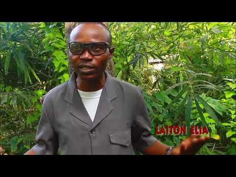 Download Safari ya kutisha kutafuta utajiri simulizi laiton Mtafya sehemu 4,B