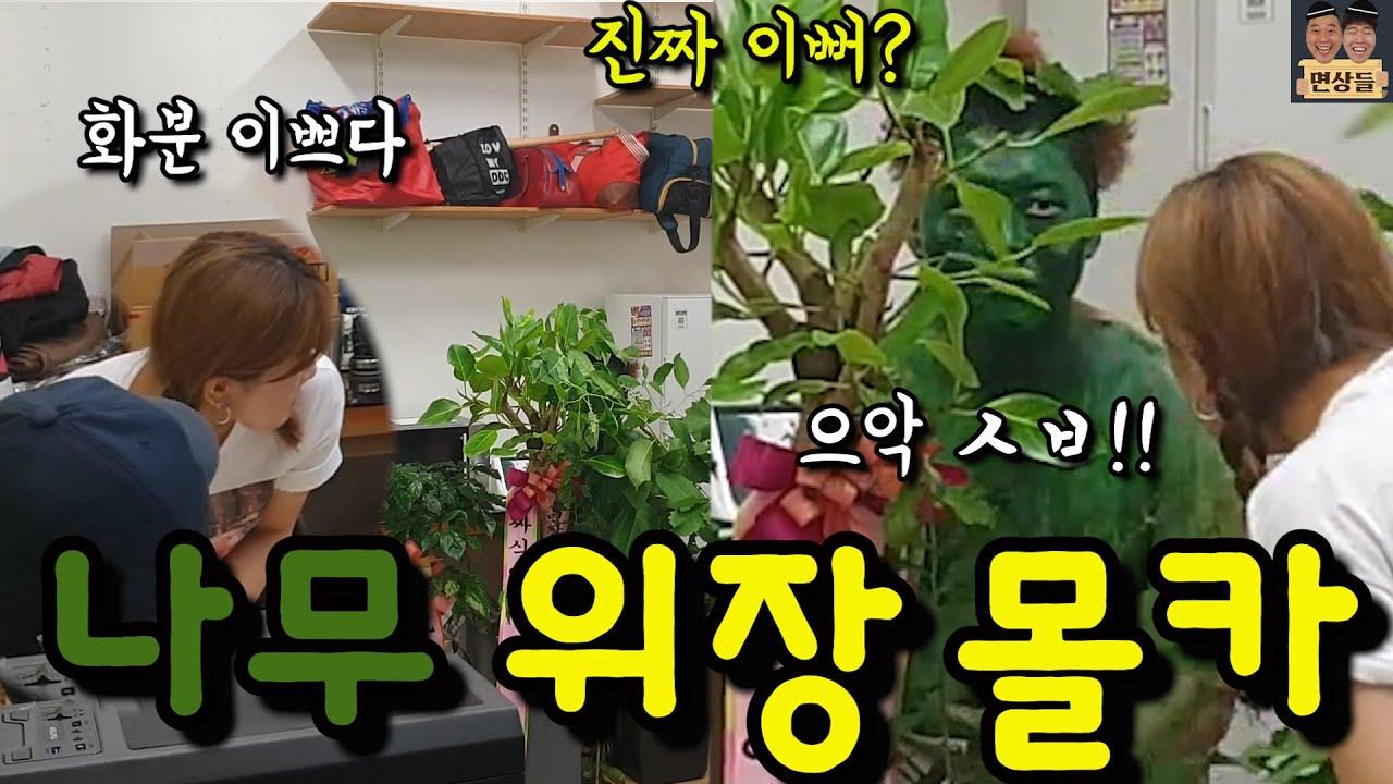 [몰카] 나무로 위장하고 유튜브 회의 같이 하기ㅋㅋㅋㅋㅋ(ft. +역몰카로 조지기ㅋㅋㅋㅋㅋ)
