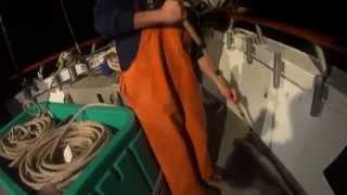 Stripe Bass Fishing on Sea Queen VII Brooklyn NY