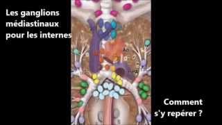 Les ganglions médiastinaux en endoscopie pour les internes