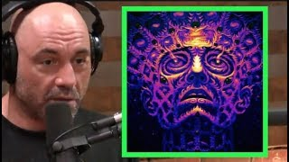 Joe Rogan - Is DMT a Portal to Another Dimension?