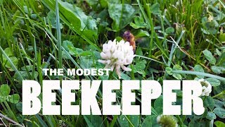 The Modest Beekeeper - A Documentary