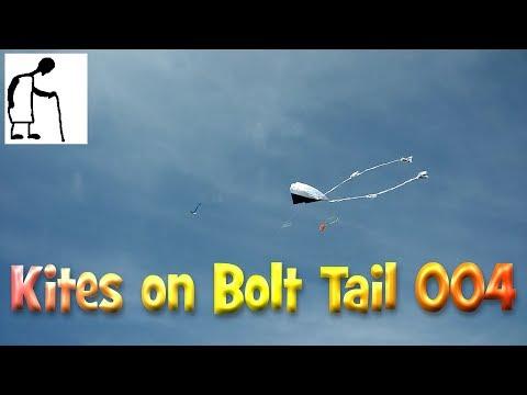 Kites on Bolt Tail 004 Mobile phone Camera