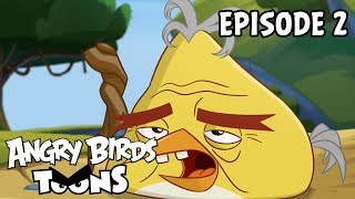 Angry Birds Toons | Bad Hair Day - S3 Ep2