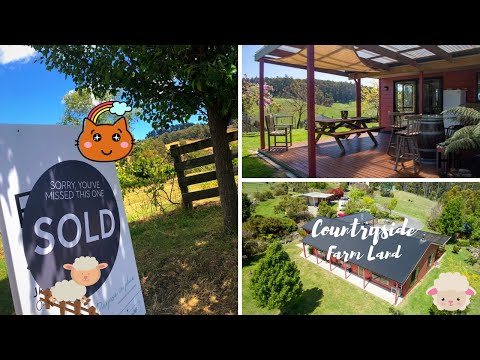 Updates Of Our House Hunting In Tasmania + How To Buy A Property In Australia