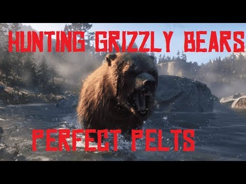 RDR2 – HUNTING GRIZZLY BEARS! HOW TO GET PERFECT BEAR PELTS! Red Dead Redemption 2
