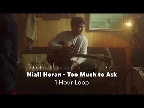 Niall Horan - Too Much To Ask (1 Hour Loop)