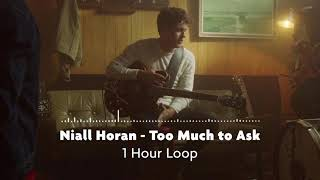 Niall Horan - Too Much to Ask (1 Hour Loop) MP3