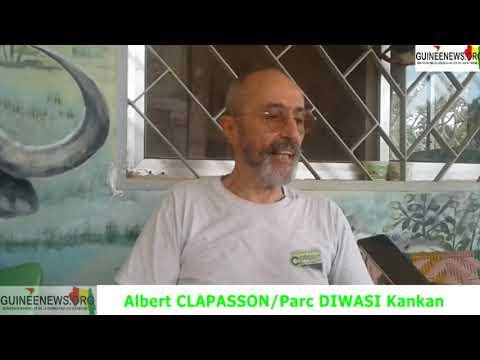 Kankan : un coup d'œil sur l'unique réserve naturelle de la région