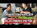 Perawatan Kacer Mabung Ala Mbah Petir  Mp3 - Mp4 Download