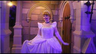 Cinderella Costume Analysis