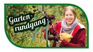 Garten im November 🥕 Selbstversorgung im Winter mit Wurzelgemüse ❄️ Adventskalender DIY