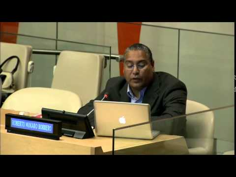 Roberto Mukaro Borrero, United Confederation of Taino People - UN WSIS+10 consultation