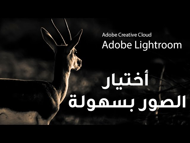 أختار ورتب صورك مع لايت روم ::  Adobe Lightroom cc