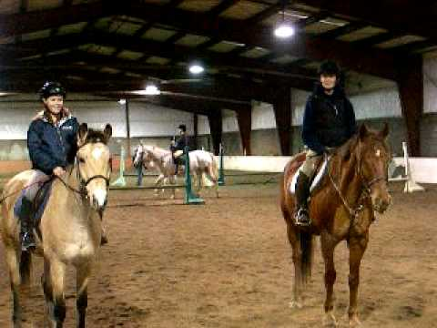 Posing For Horse Pictures   Nepean Park Arena from YouTube · Duration:  27 seconds