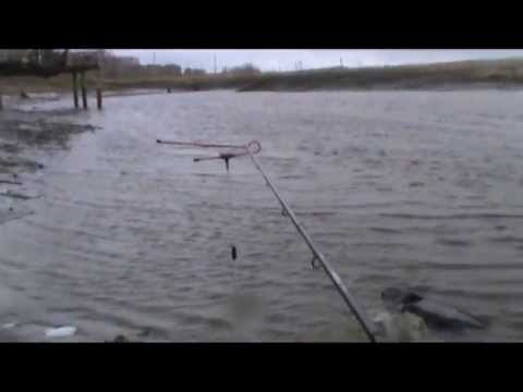 Ветер, дождь, холод, грязь и рыба или фидер на реке Ирмень ...