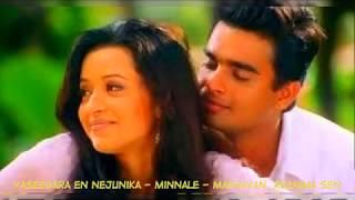 Naan Nesipathum Suvasipathum Full Tamil Song I மின்னலே பாடல்கள் - வசீகரா என் நெஞ்சினிக்க
