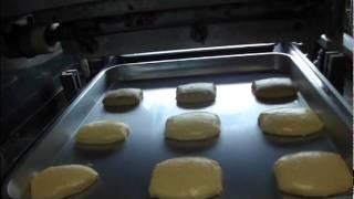 ジャパンシステム デポジッターAR-52 動作試験画像 | 食品機械ネット