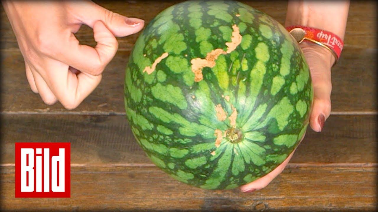 woran erkennt man eine gute wassermelone