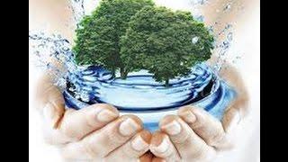 Предмет и структура экологии