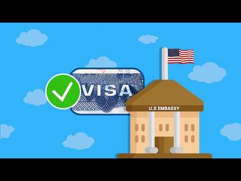ESTA Visa USA: Devo Contattare L'ambasciata Americana?
