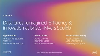 AWS re:Invent 2019: Data lakes reimagined: Efficiency & innovation at Bristol-Myers Squibb (LFS204)