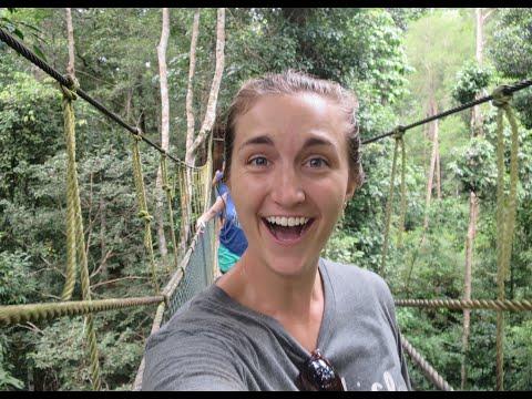 World's Oldest Rainforest | Taman Negara