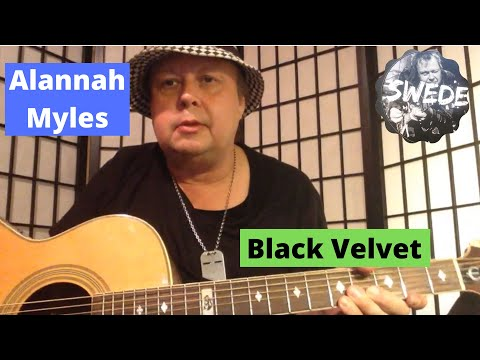 Alannah Myles - Black Velvet - Guitar Lesson - YouTube