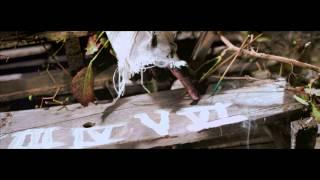 White Fox Society - Bleeding The Ink (Music Video)