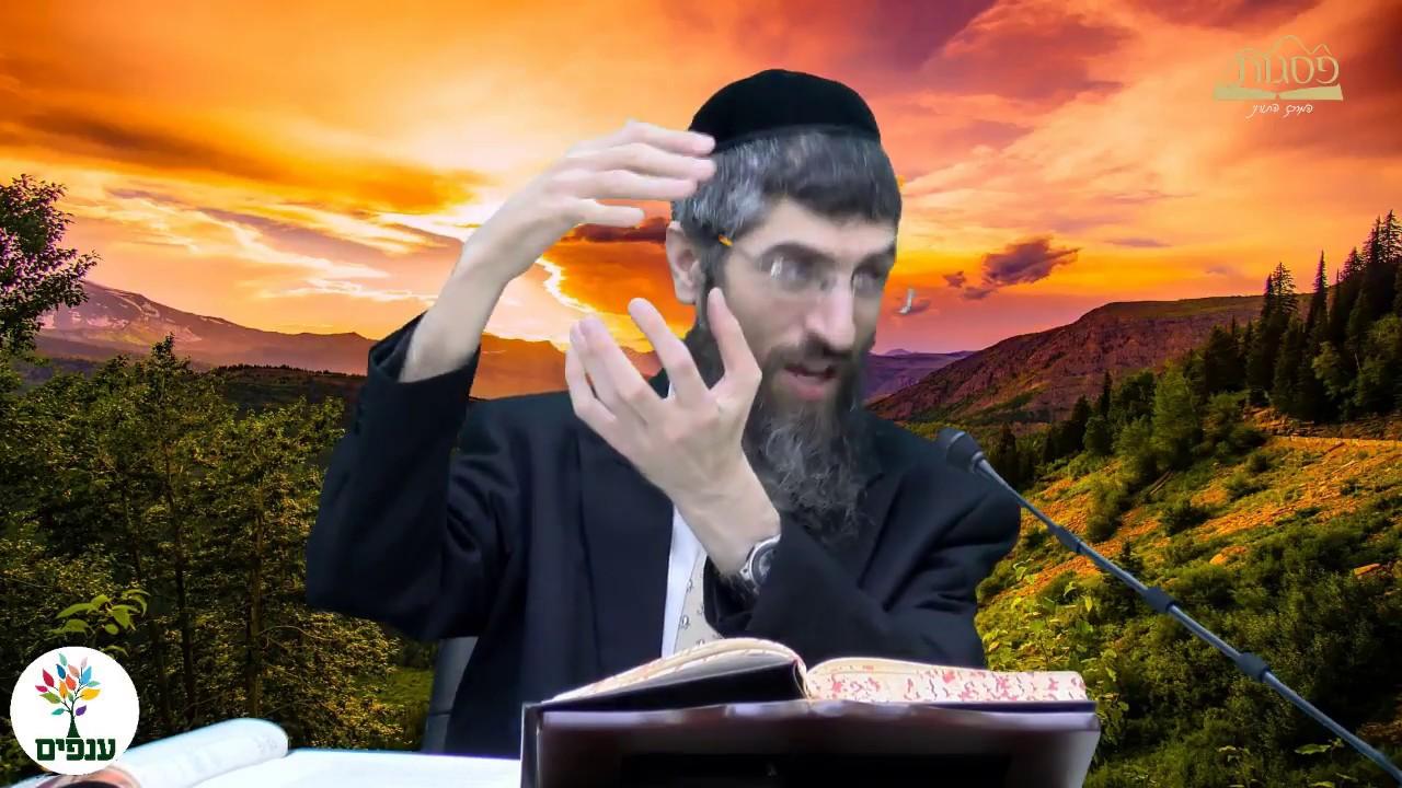 הטמנה בשבת - הרב יצחק יוסף (הנכד) HD - שידור חוזר