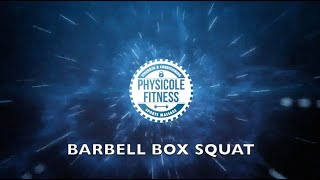 Barbell Box Squat