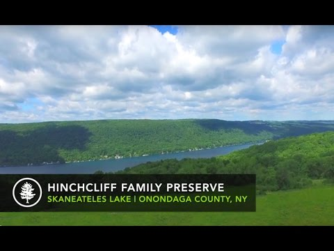 Skaneateles Lake Aerial View Of The Hinchcliff Family Preserve
