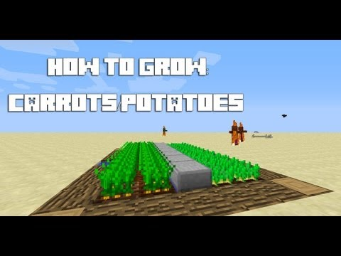 Minecraft Tutorial: How To Grow Carrots/Potatoes
