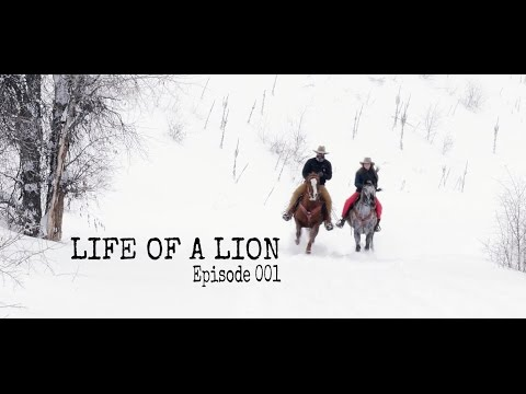 Life of a Lion  Episode 001