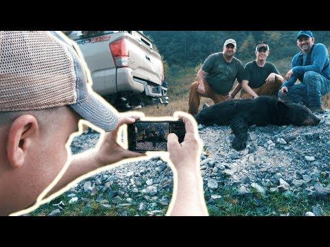 WEST VIRGINIA BEAR CAMP - Hound Hunting