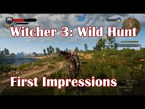 Witcher 3: Wild Hunt - First Impressions (PC)