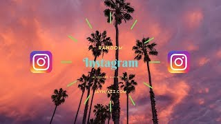 📹Some of our Random Instagram Videos - Travel - Cat - Washington - Instagram Videos📹