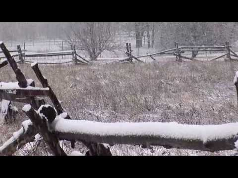 Beautiful Snow Falling In Pinetop AZ
