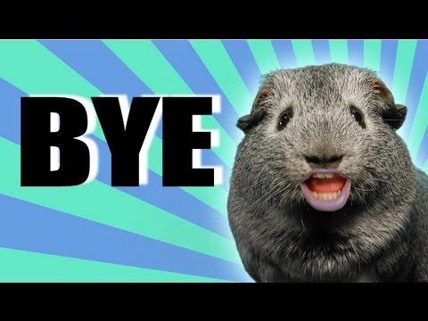 CHARLIE SAYS GOODBYE Final Episode