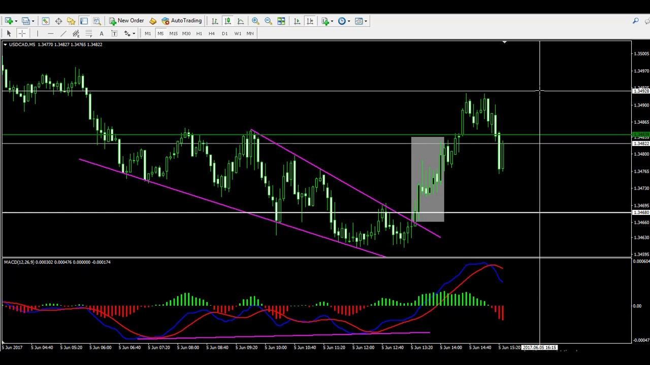 Live forex indicators